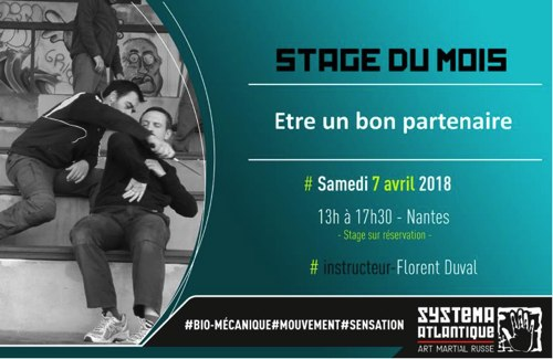 STAGE SYSTEMA à NANTES le 7 avril