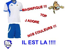 LE MAILLOT OFFICIEL DES RASCASSES