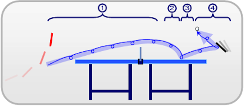 Wikipedia-TableTennis-TopspinCurve-4Phases1.png
